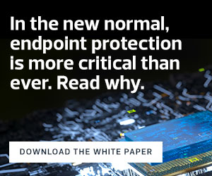Download a white paper on endpoint security