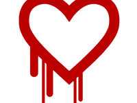 What Heartbleed Felt Like in Federal IT